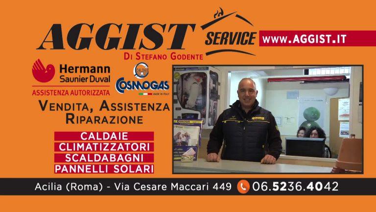 Aggist Service