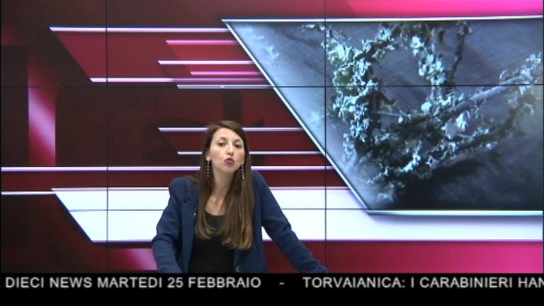 Canale 10 News 25/02/2020 seconda edizione