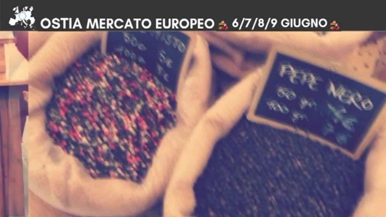Mercato Europeo Ostia