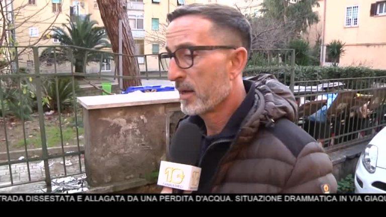 Canale 10 News 04/01/2020 seconda edizione