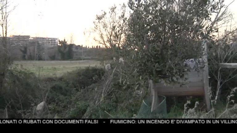 Canale 10 News 09/01/2020 seconda edizione