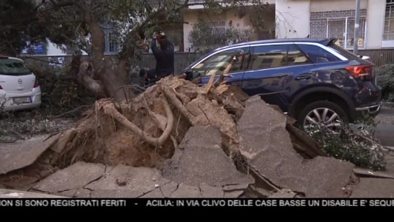 Canale 10 News 06/02/2020 seconda edizione
