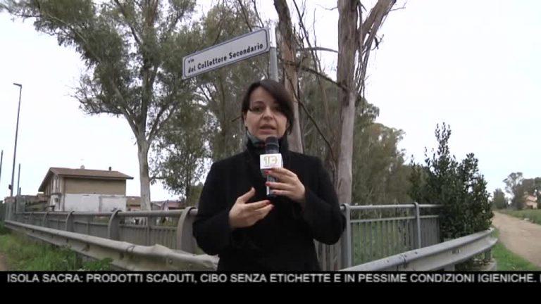 Canale 10 News 12/02/2020 seconda edizione