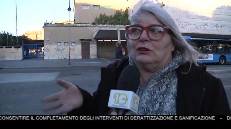 Canale 10 News 15/02/2020 seconda edizione