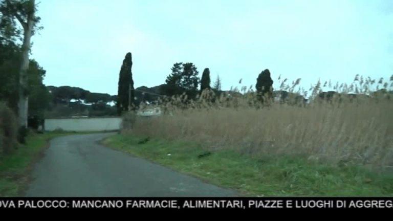 Canale 10 News 26/02/2020 seconda edizione