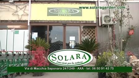 Solara Garden Center