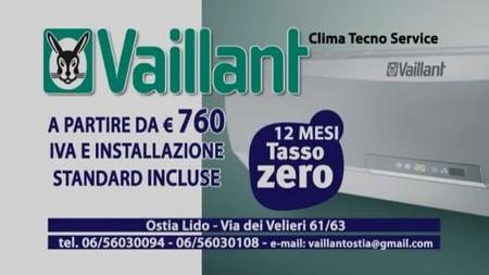 Vaillant Clima Tecno Service