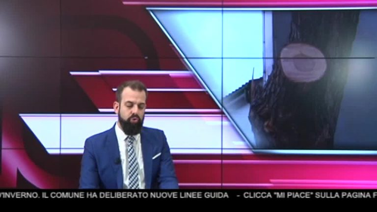 Canale 10 News 02/11/2019 seconda edizione