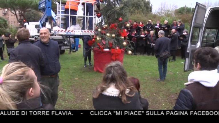 Canale 10 News 23/12/2019 seconda edizione