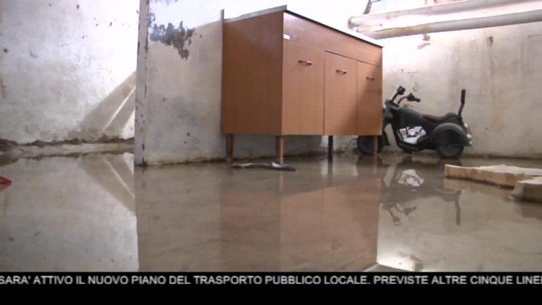 Canale 10 News 09/05/2020 seconda edizione