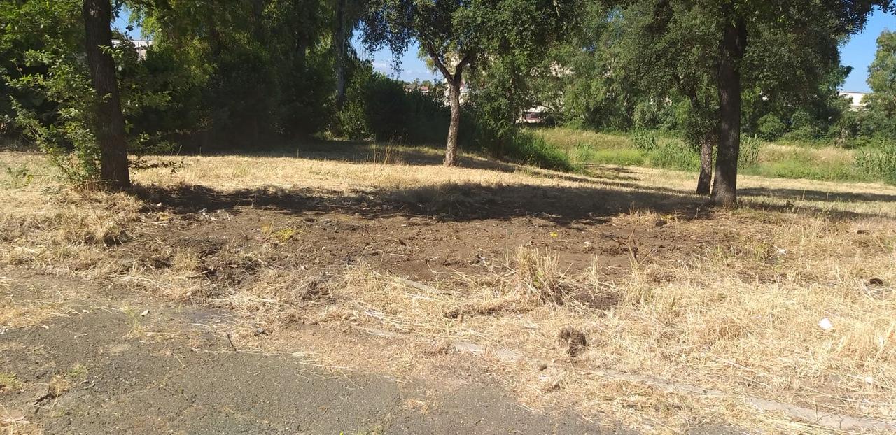 Decimo Municipio: rimossa discarica Parco Lilloni