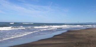 volontari spiagge libere fiumicino