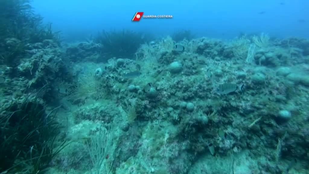 """Giornata Mondiale degli Oceani: anche a Ostia si è svolta l'operazione """"Spazzamare"""" 4"""