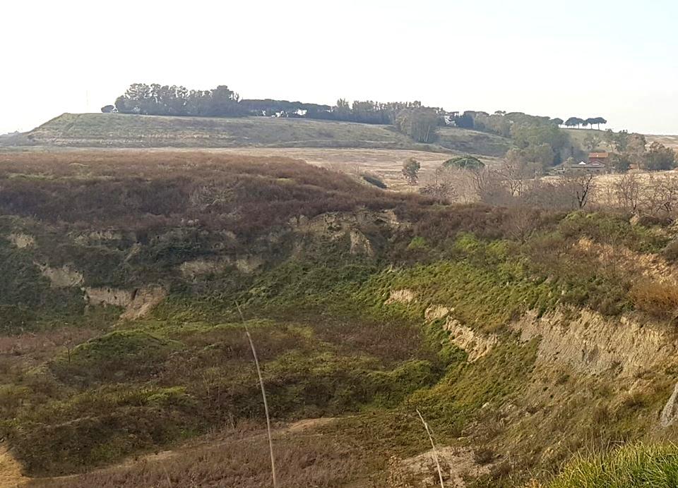 monte carnevale