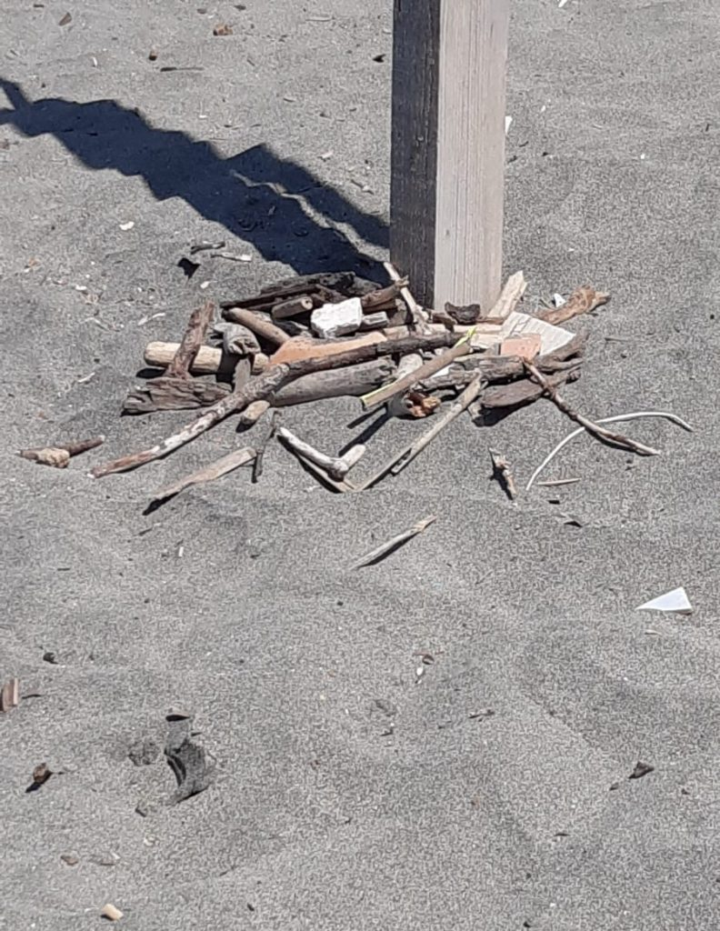Ostia: ancora un siringa su una spiaggia libera. Una donna si è punta 1