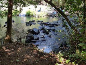 Due persone di Ostia perse nel Parco del Treja
