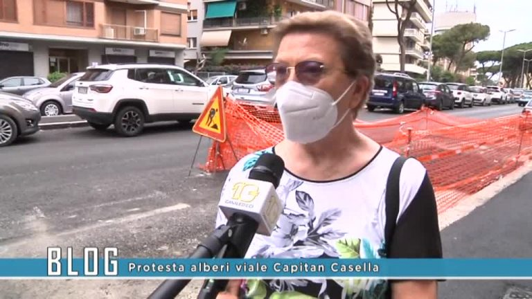 Protesta alberi viale Capitan Casella