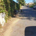 Acilia: volontari bonificano via di Prato Cornelio 2