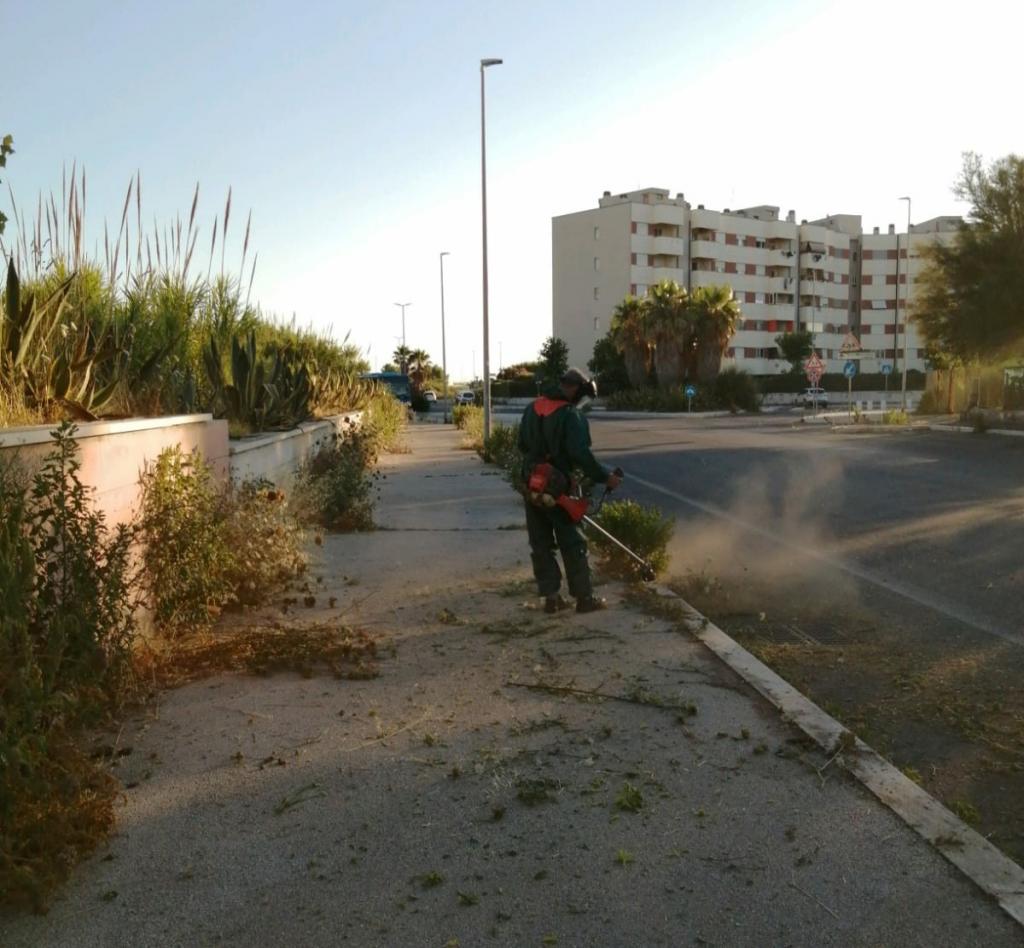 Ostia, Piano Mare: al via la pulizia e il monitoraggio del litorale 4