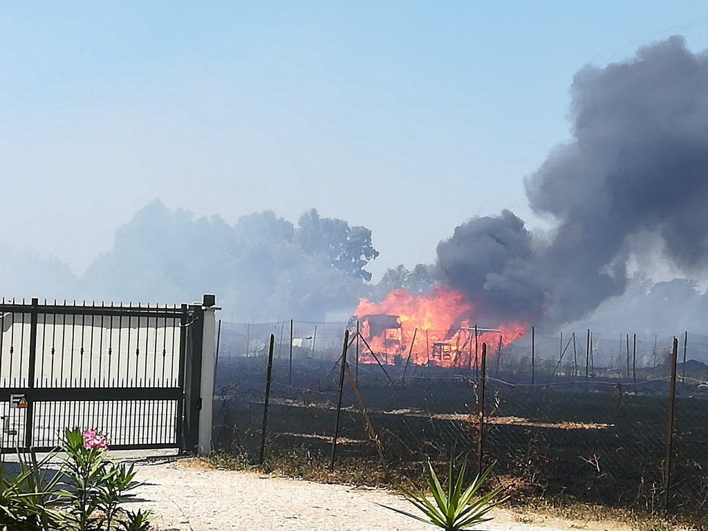 Piana del Sole: ennesimo incendio di terreni incolti 4