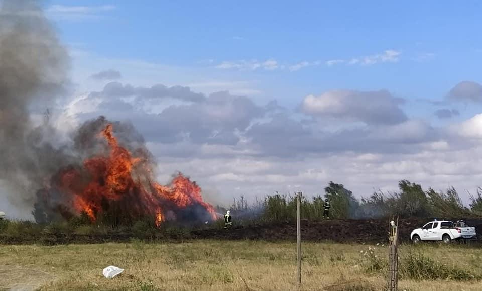 Fiumicino: la Protezione Civile organizza un corso per operatori anti incendio 1