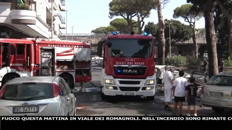 Canale 10 News 12/08/2020