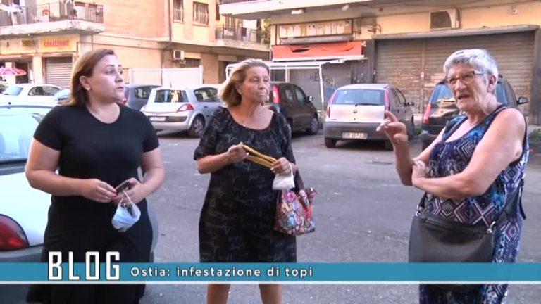 Infestazione topi Piazza Gasparri
