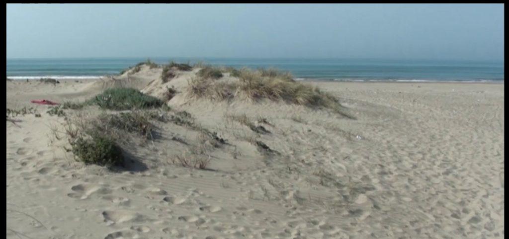 Dune di Passoscuro: ancora accampamenti abusivi 2