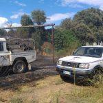 Incendi a Cerveteri: doppio intervento della Protezione civile 2