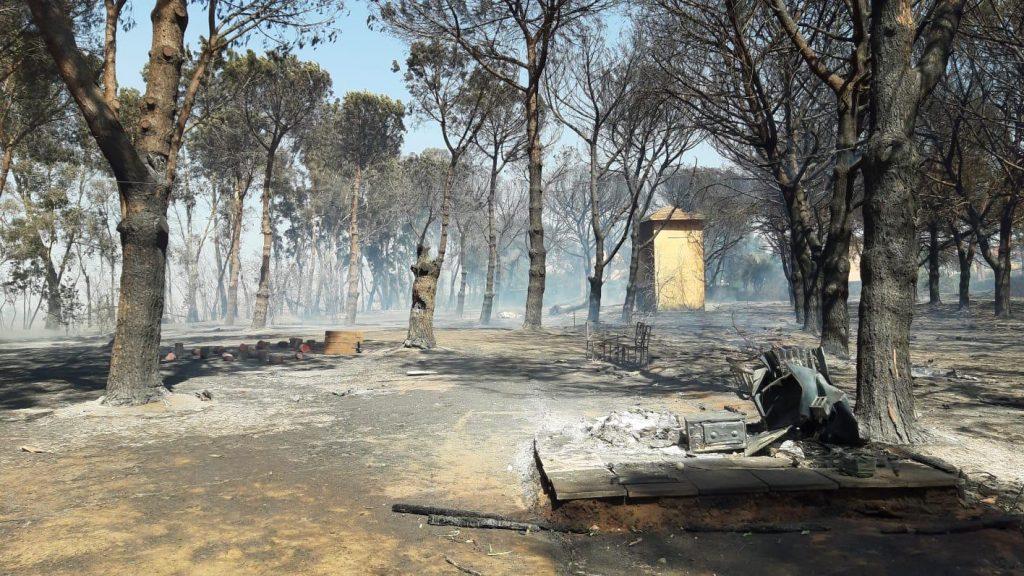 Torvaianica: vasto incendio in via Danimarca. Chiusa la via Mare 1