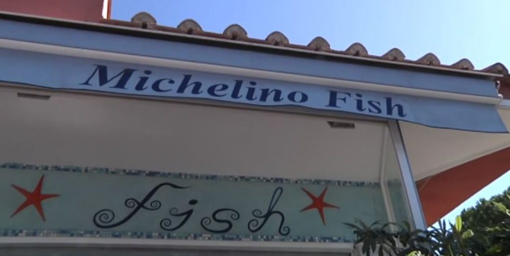 michelino fish