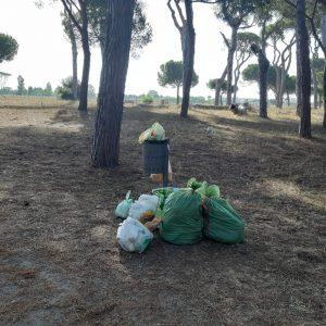 Troppi rifiuti nella pineta di Fregene 1