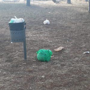 Troppi rifiuti nella pineta di Fregene 2