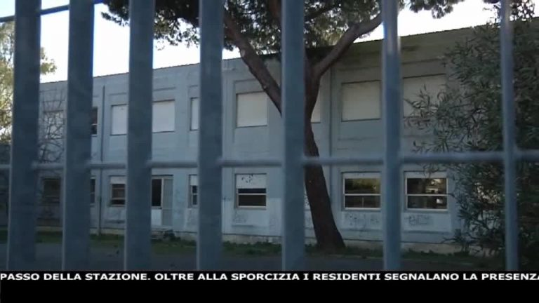 Canale 10 News 19/09/2020