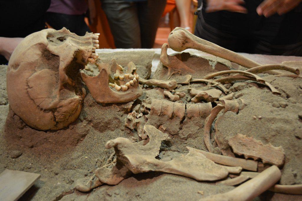 Archeologia a Pomezia: uno scheletro umano perfettamente conservato al Museo Lavinium. 5