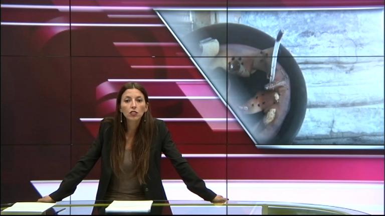 Canale 10 News 20/10/2020 seconda edizione