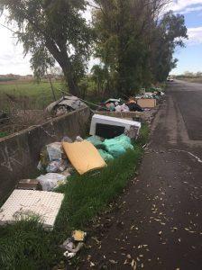 """""""L'area sequestrata è piena di rifiuti"""": la denuncia dei volontari di Ardea 1"""