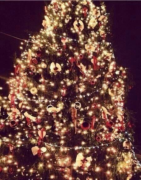 Natale a Nettuno