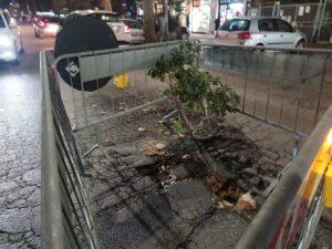 Ostia, l'asfalto si sbriciola: attenzione, transenne a centro strada 1