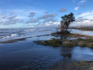 Erosione e strade allagate a Focene: i cittadini si rivolgono al Comune 2
