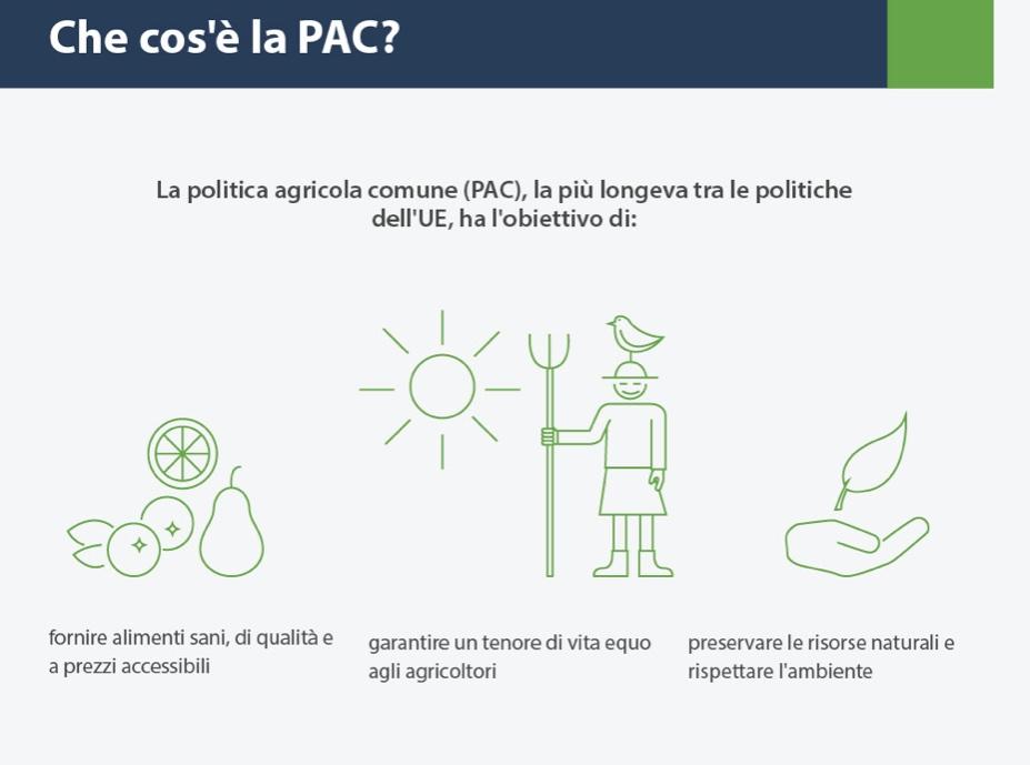 Politica agricola comune: la riforma della PAC Europea 1