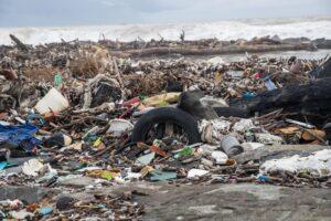 Aperte le barriere anti-rifiuti sul Tevere: alla foce attesa onda di piena di plastica 1