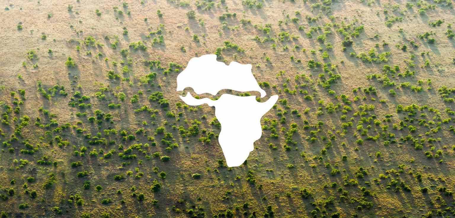 La muraglia verde in Africa per impedirne la desertificazione: un progetto reale e in corso 2