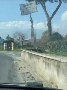 Ardea, donna sfugge dall'ospedale e impicca un gatto 1