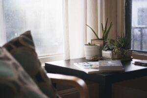 Piante che depurano l'aria di casa e dell'ufficio 2