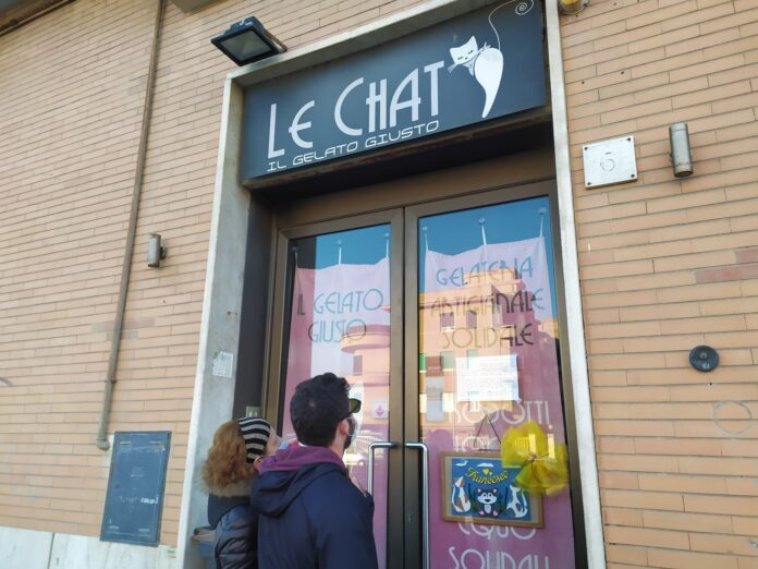 le chat chiude