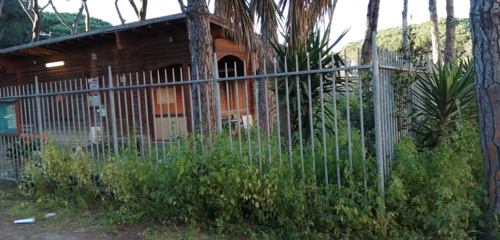 Il parco Clemente Riva di Ostia soffoca nei rifiuti 1