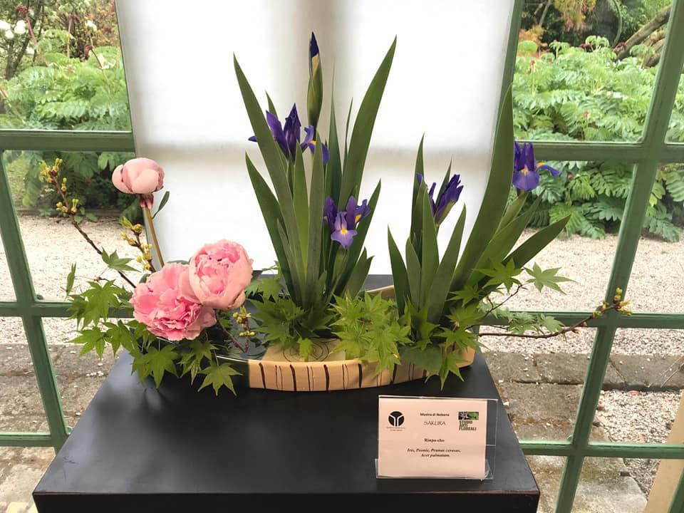Orto Botanico di Roma in fiore: gli eventi tra aprile e maggio 2