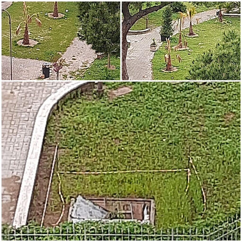Ostia, Giardino Paolo Orlando: l'area verde trasformata in una discarica (VIDEO) 1