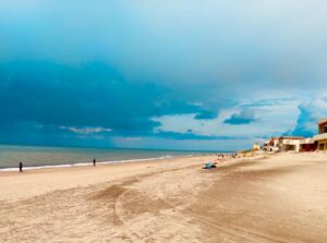 Ardea, i volontari puliscono la spiaggia: raccolti oltre 800 chili di plastica 3